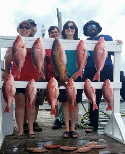 Red Snapper 2015 is here